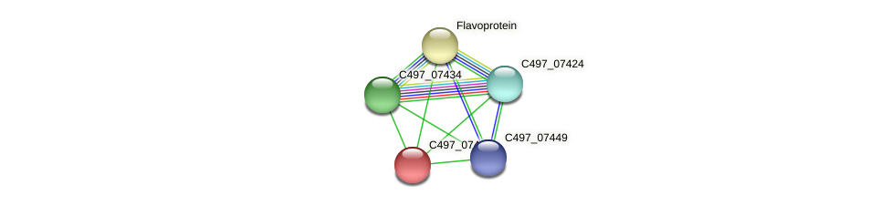 C497_07444 protein (Halalkalicoccus jeotgali) - STRING interaction network
