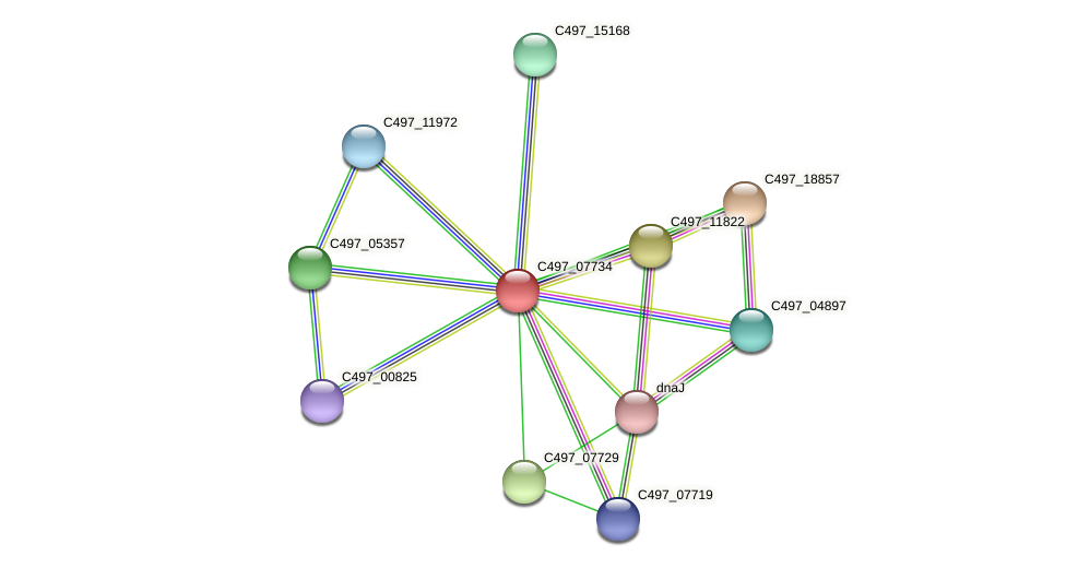 C497_07734 protein (Halalkalicoccus jeotgali) - STRING interaction network