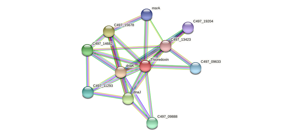 C497_08129 protein (Halalkalicoccus jeotgali) - STRING interaction network