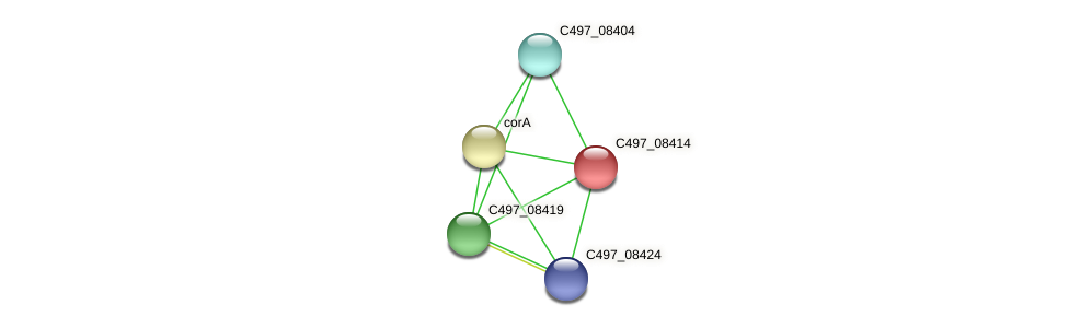 C497_08414 protein (Halalkalicoccus jeotgali) - STRING interaction network
