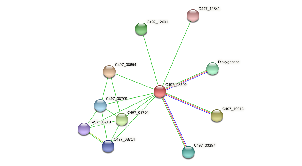 C497_08699 protein (Halalkalicoccus jeotgali) - STRING interaction network