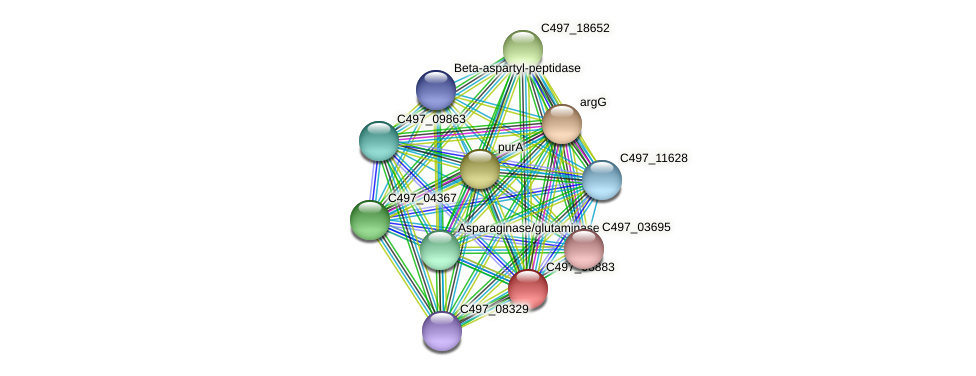 HacjB3_13670 protein (Halalkalicoccus jeotgali) - STRING interaction network
