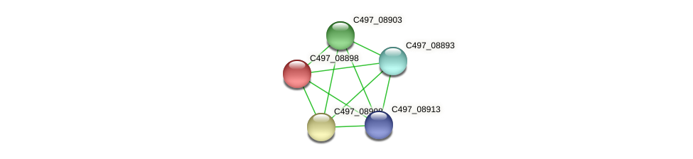 C497_08898 protein (Halalkalicoccus jeotgali) - STRING interaction network