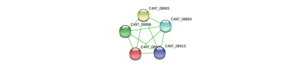 C497_08908 protein (Halalkalicoccus jeotgali) - STRING interaction network