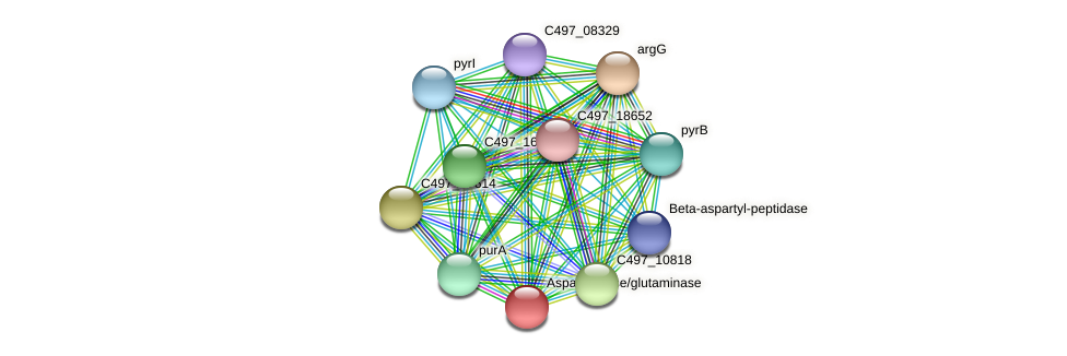 HacjB3_13710 protein (Halalkalicoccus jeotgali) - STRING interaction network