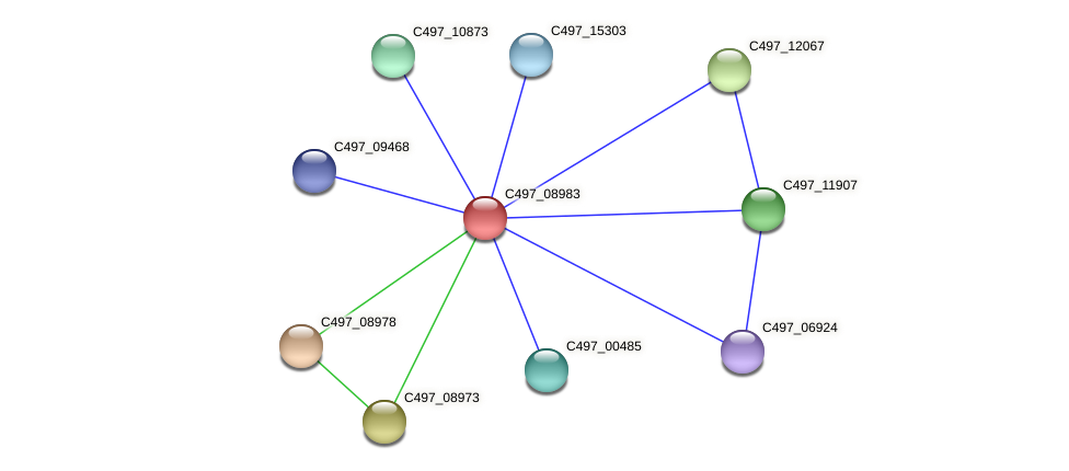 C497_08983 protein (Halalkalicoccus jeotgali) - STRING interaction network