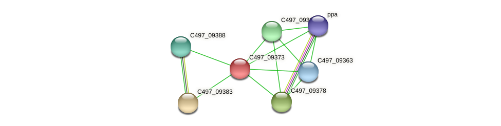 C497_09373 protein (Halalkalicoccus jeotgali) - STRING interaction network