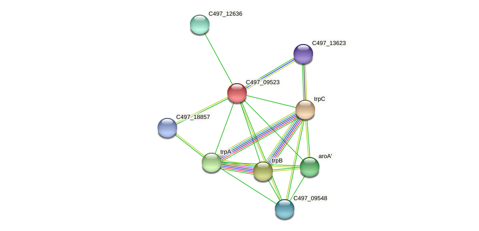 C497_09523 protein (Halalkalicoccus jeotgali) - STRING interaction network