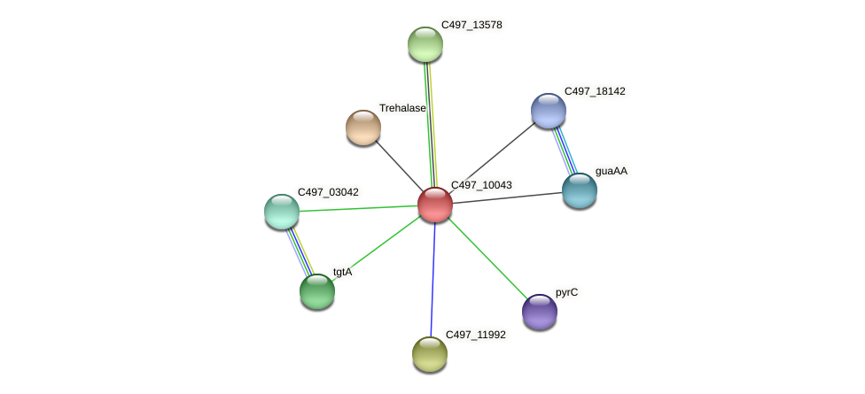 C497_10043 protein (Halalkalicoccus jeotgali) - STRING interaction network