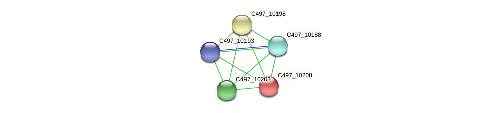 C497_10208 protein (Halalkalicoccus jeotgali) - STRING interaction network