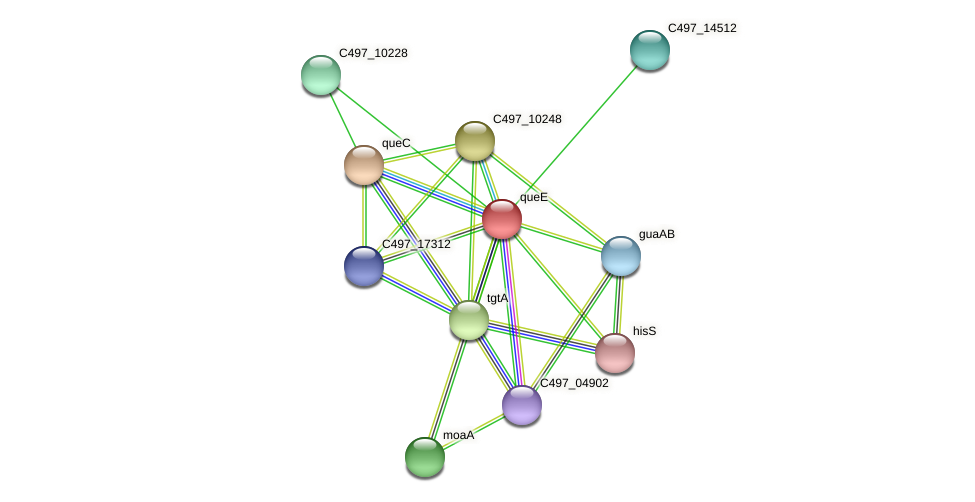 queE protein (Halalkalicoccus jeotgali) - STRING interaction network