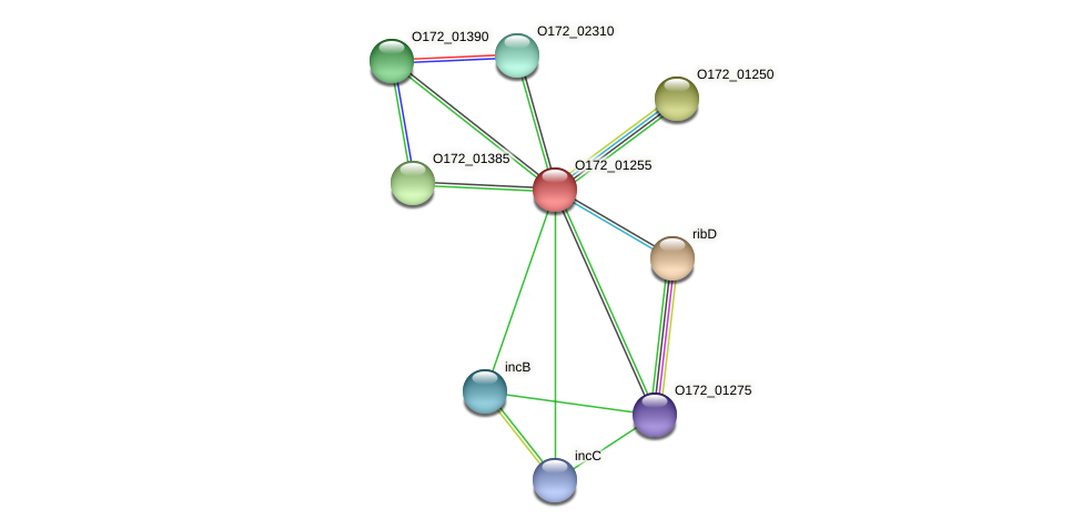 O172_01255 protein (Chlamydia trachomatis) - STRING interaction network