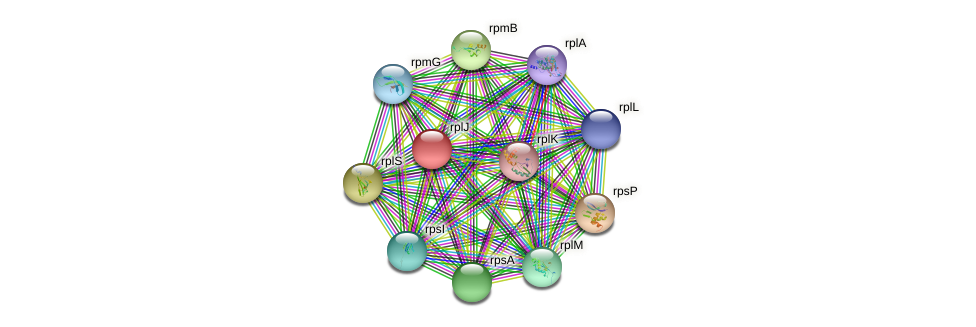 O172_01695 protein (Chlamydia trachomatis) - STRING interaction network