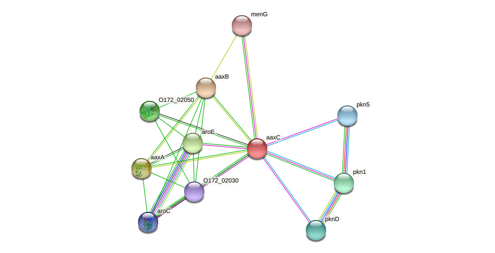 aaxC protein (Chlamydia trachomatis) - STRING interaction network