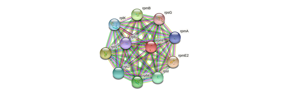 rpmI protein (Chlamydia trachomatis) - STRING interaction network