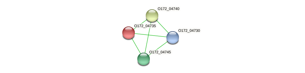 O172_04735 protein (Chlamydia trachomatis) - STRING interaction network