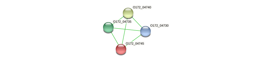 O172_04745 protein (Chlamydia trachomatis) - STRING interaction network