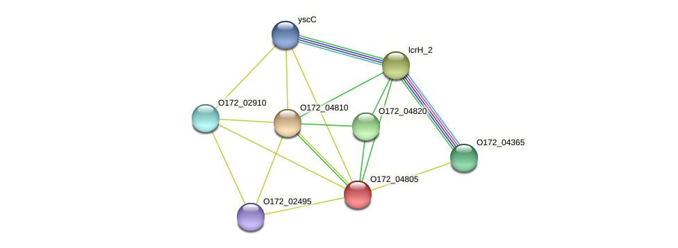 CT860 protein (Chlamydia trachomatis) - STRING interaction network