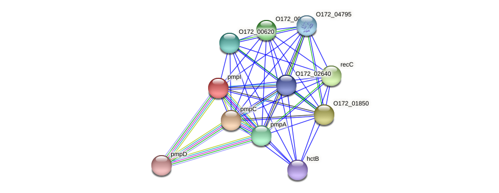 pmpI protein (Chlamydia trachomatis) - STRING interaction network