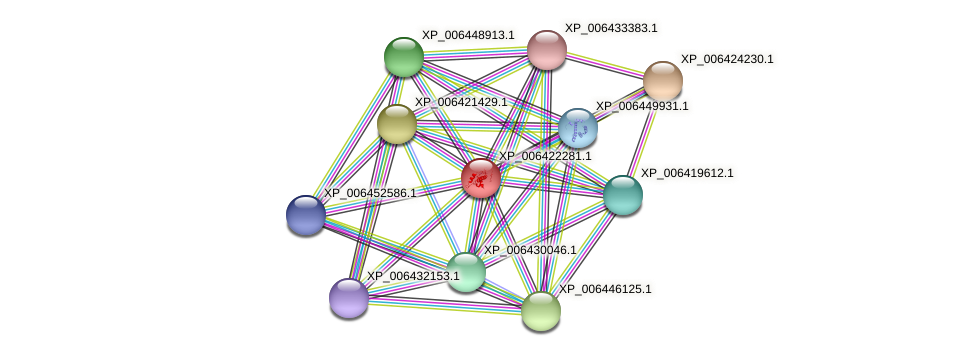 XP_006422281.1 protein (Citrus clementina) - STRING interaction network