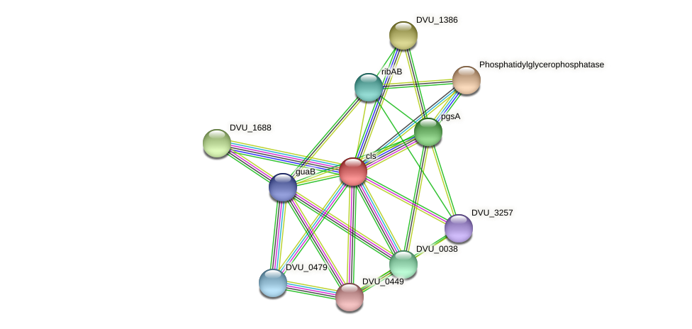 cls protein (Desulfovibrio vulgaris Hildenborough) - STRING interaction network