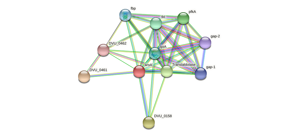 aroA' protein (Desulfovibrio vulgaris Hildenborough) - STRING interaction network