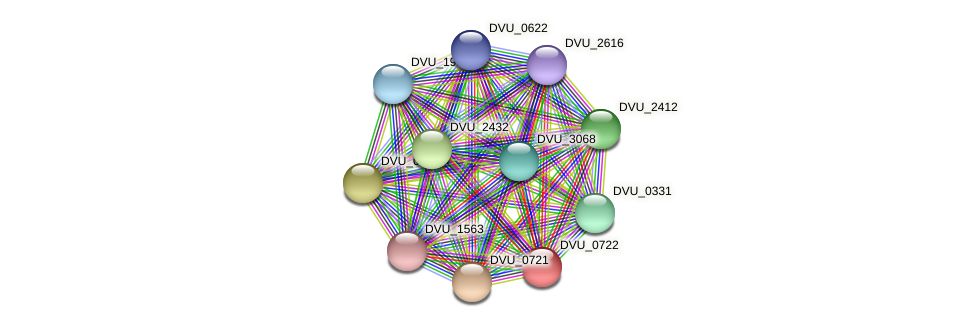 DVU_0722 protein (Desulfovibrio vulgaris Hildenborough) - STRING interaction network