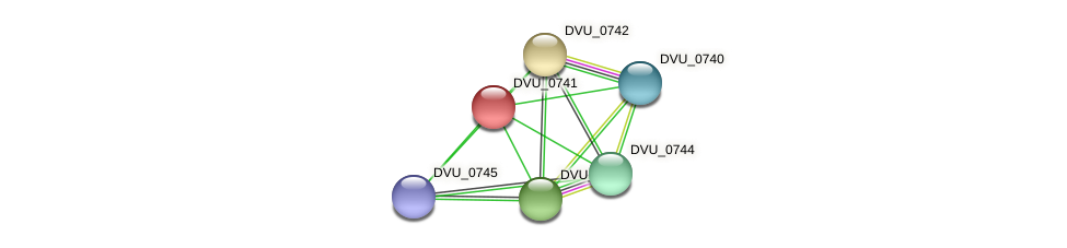DVU_0741 protein (Desulfovibrio vulgaris Hildenborough) - STRING interaction network