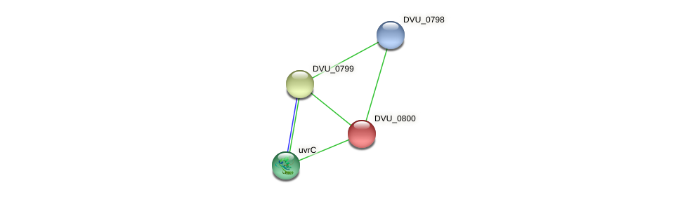 DVU_0800 protein (Desulfovibrio vulgaris Hildenborough) - STRING interaction network