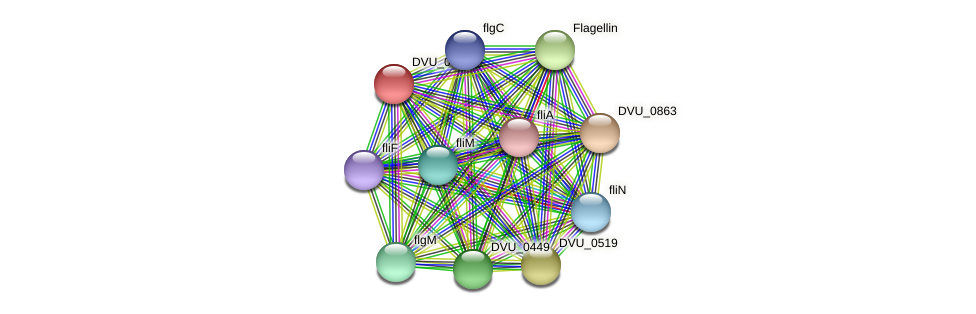 DVU_0862 protein (Desulfovibrio vulgaris Hildenborough) - STRING interaction network