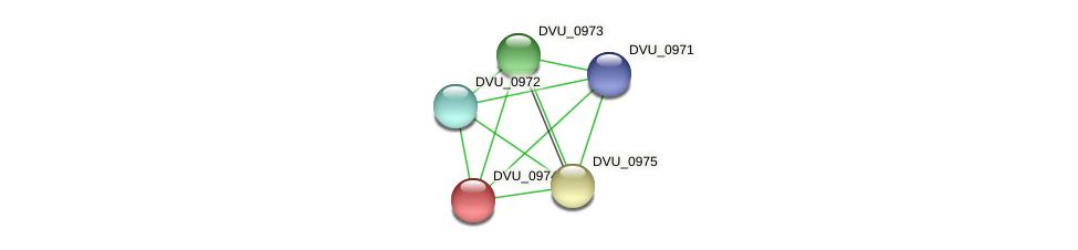 DVU_0974 protein (Desulfovibrio vulgaris Hildenborough) - STRING interaction network