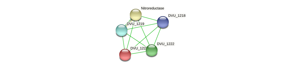 DVU_1221 protein (Desulfovibrio vulgaris Hildenborough) - STRING interaction network