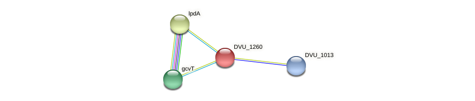 DVU_1260 protein (Desulfovibrio vulgaris Hildenborough) - STRING interaction network