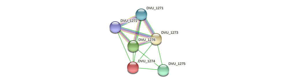 DVU_1274 protein (Desulfovibrio vulgaris Hildenborough) - STRING interaction network