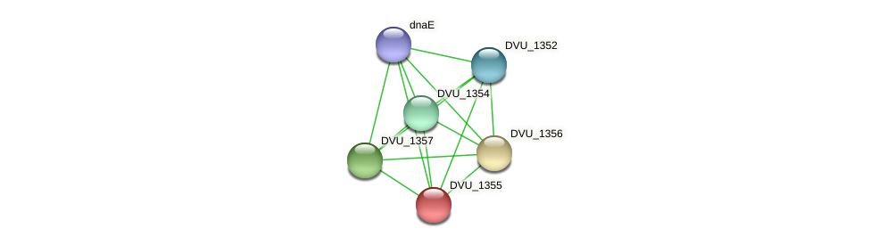 DVU_1355 protein (Desulfovibrio vulgaris Hildenborough) - STRING interaction network