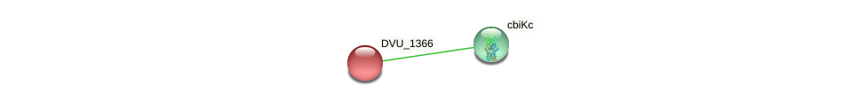 DVU_1366 protein (Desulfovibrio vulgaris Hildenborough) - STRING interaction network