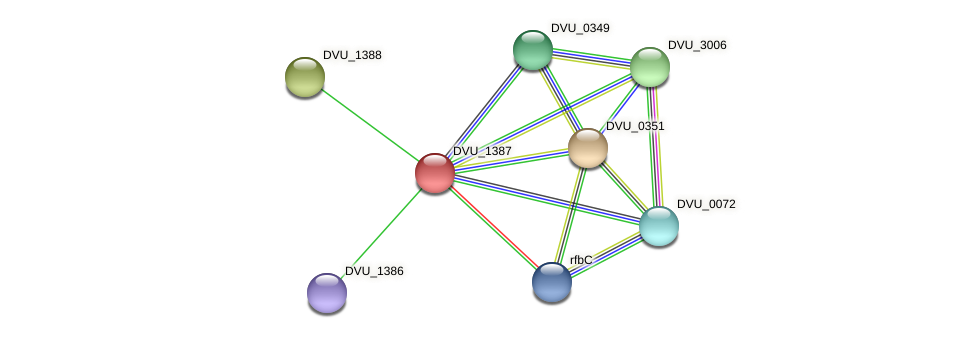 DVU_1387 protein (Desulfovibrio vulgaris Hildenborough) - STRING interaction network