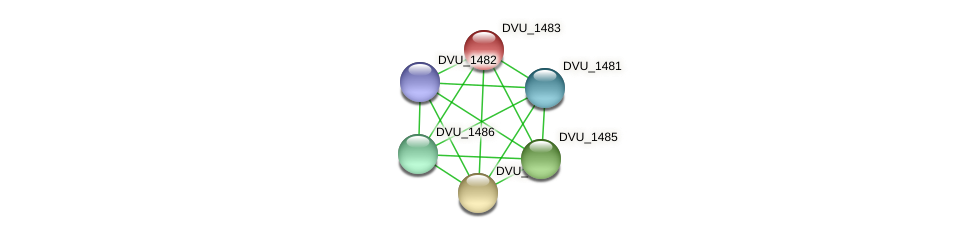 DVU_1483 protein (Desulfovibrio vulgaris Hildenborough) - STRING interaction network