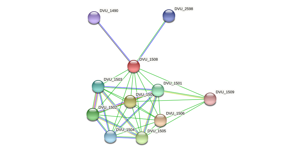 DVU_1508 protein (Desulfovibrio vulgaris Hildenborough) - STRING interaction network