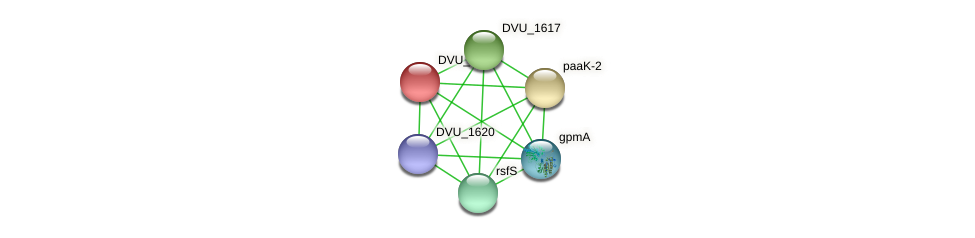 DVU_1616 protein (Desulfovibrio vulgaris Hildenborough) - STRING interaction network