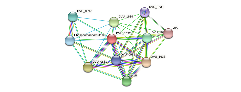 DVU_1632 protein (Desulfovibrio vulgaris Hildenborough) - STRING interaction network