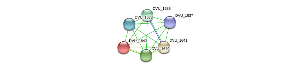 DVU_1642 protein (Desulfovibrio vulgaris Hildenborough) - STRING interaction network