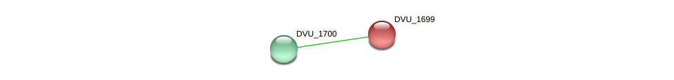 DVU_1699 protein (Desulfovibrio vulgaris Hildenborough) - STRING interaction network
