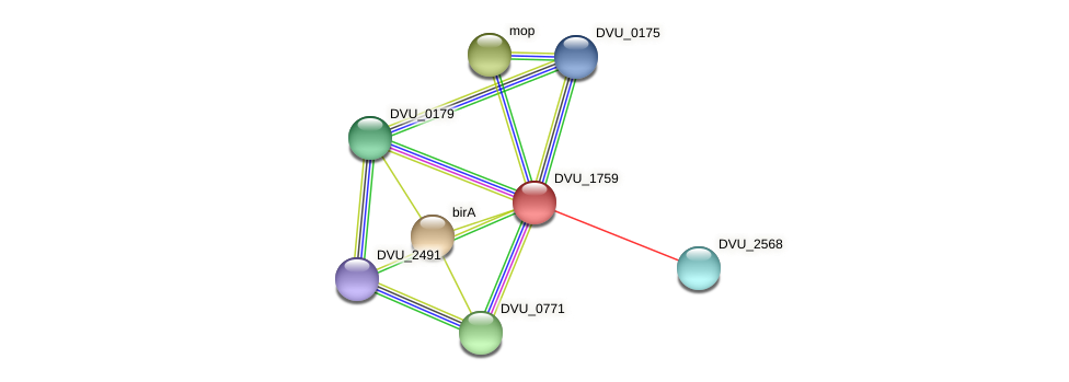 DVU_1759 protein (Desulfovibrio vulgaris Hildenborough) - STRING interaction network