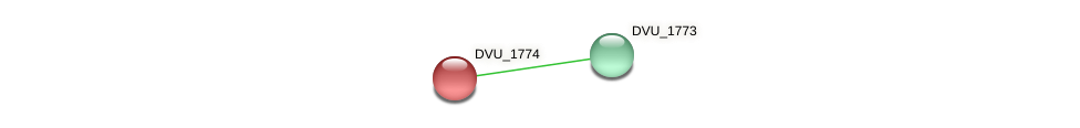 DVU_1774 protein (Desulfovibrio vulgaris Hildenborough) - STRING interaction network
