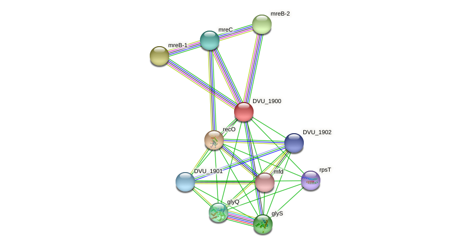 DVU_1900 protein (Desulfovibrio vulgaris Hildenborough) - STRING interaction network