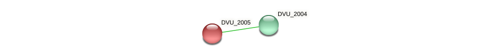 DVU_2005 protein (Desulfovibrio vulgaris Hildenborough) - STRING interaction network