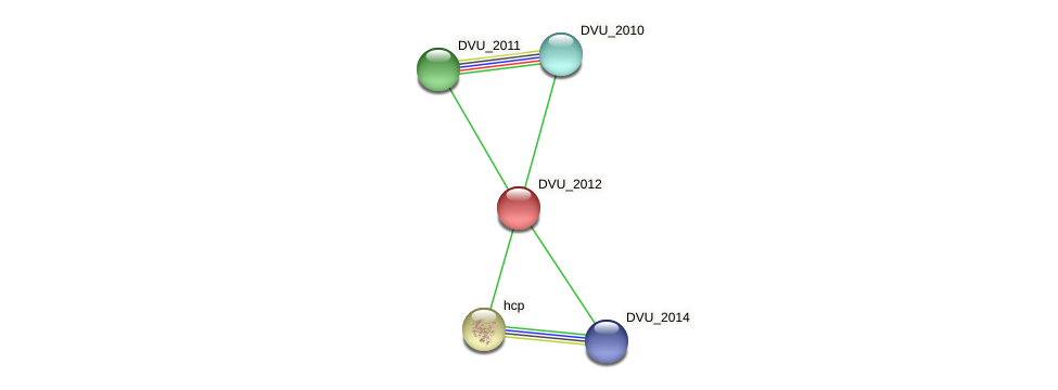 DVU_2012 protein (Desulfovibrio vulgaris Hildenborough) - STRING interaction network