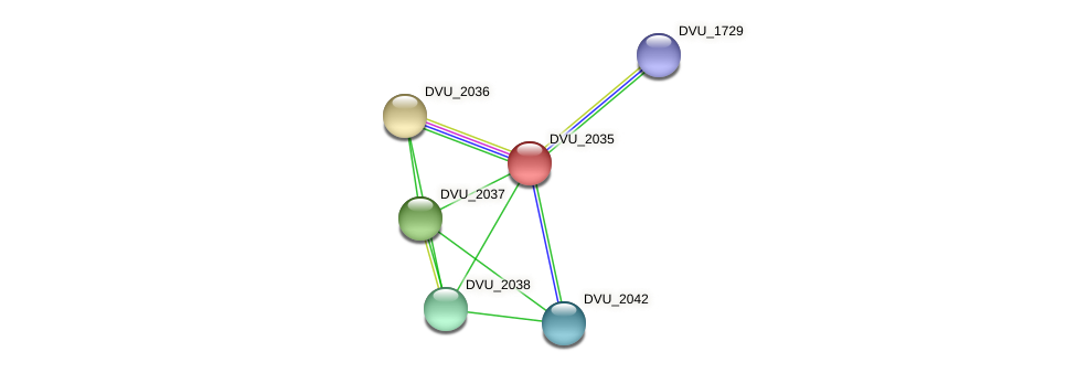 DVU_2035 protein (Desulfovibrio vulgaris Hildenborough) - STRING interaction network