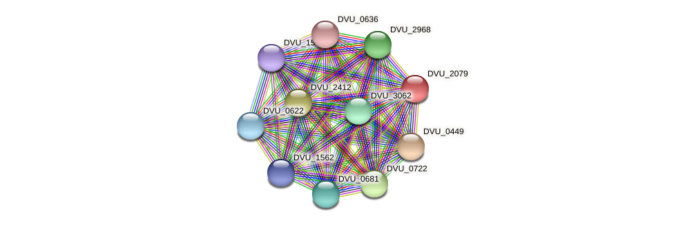 DVU_2079 protein (Desulfovibrio vulgaris Hildenborough) - STRING interaction network